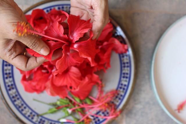 paticheri hibiscus flower syrup (3)