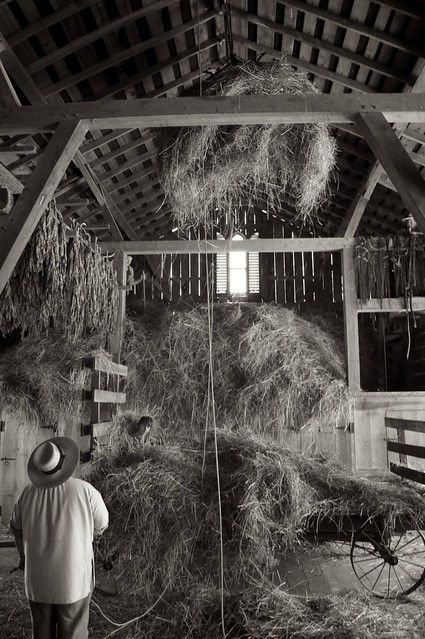 Loading the Hay 3
