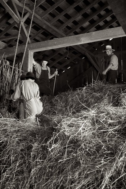 Loading the Hay 5