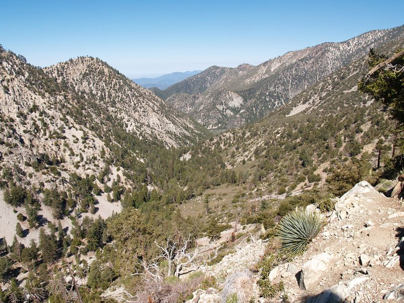 Looking down Icehouse Canyon from high up on the Chapman Trail