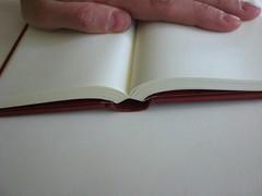 rebel arts notebook5