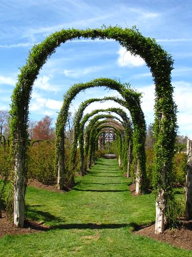 The Arches at Elizabeth Park