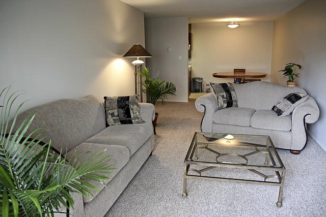 new living room setup