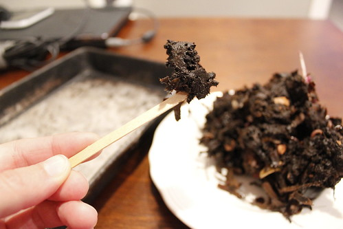 20120407. Beginning to harvest the worm poop.