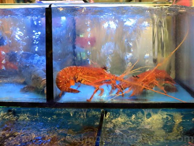 福州海洋平價海鮮餐廳  seafood dinner-006
