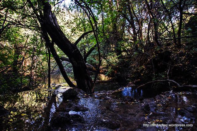 Cascada Piatra Verde