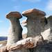 Stone Mushrooms - Babeel