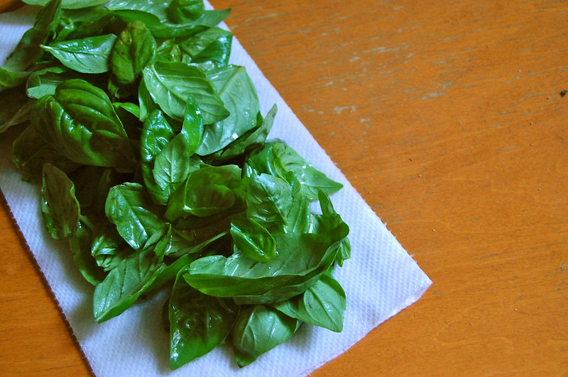 Washed and Dried Basil
