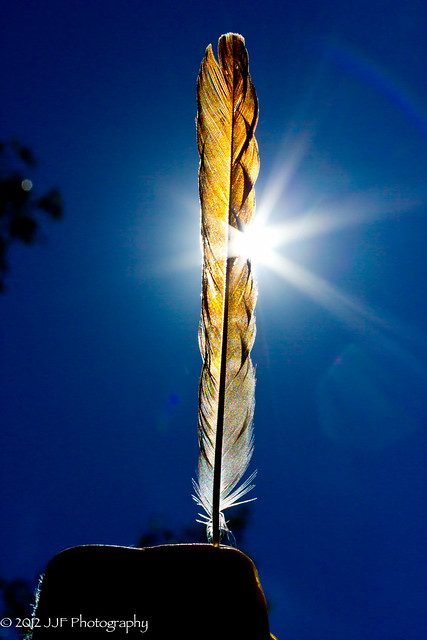 2012_Jul_25_Feather_017