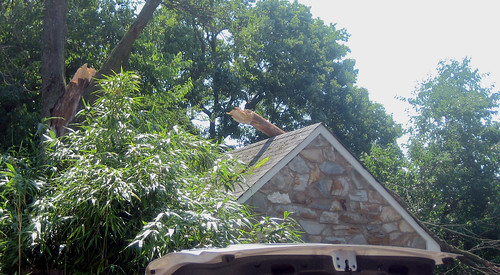 20120630 1011 - storm damage while yardsaleing - rock vs. tree = rock wins - IMG_4543