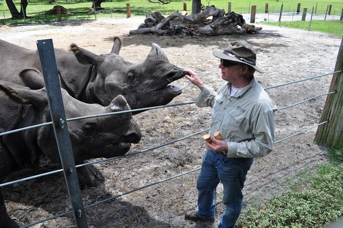 Ranch Co-Owner Lex Salisbury and Rhinos, Giraffe Ranch, Dade City, Fla.