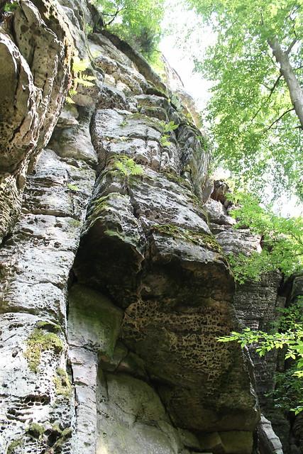 I wanna climb that!