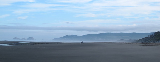 Oregon Beach in the Morning Light