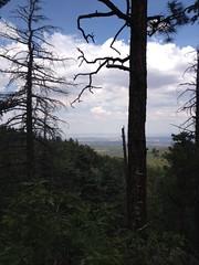 Faulty Trail by ewhughes1