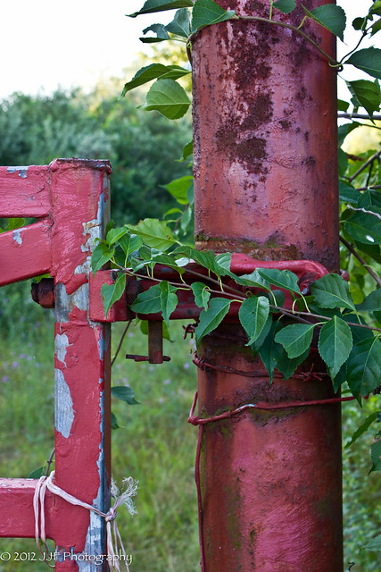 2012_Jul_22_Fences_006