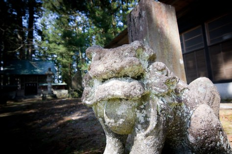 #32 The Married Couple Cryptomeria of Kurokawa Shrine