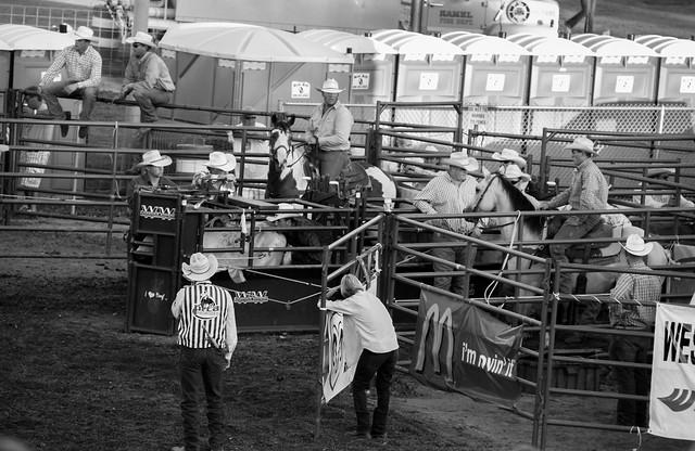 Hamel rodeo