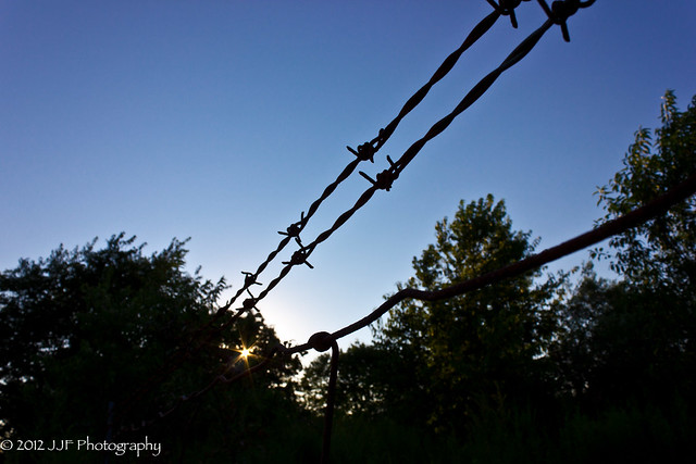 2012_Jul_22_Fences_013