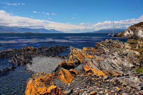 Island H -Beagle Channel 3(Argentina)