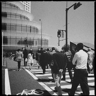 Camera Roll-921