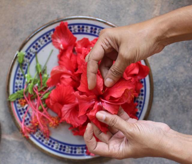 paticheri hibiscus flower syrup (4)