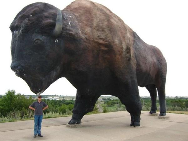 World's Largest Buffalo Statue   …   Flickr - Photo Sharing!