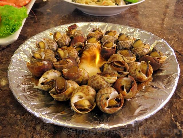 snails-002