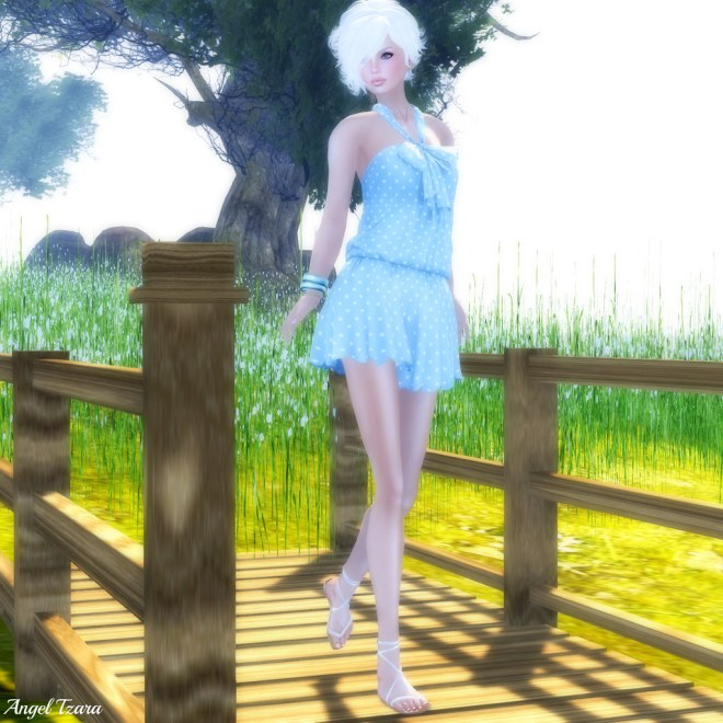 Bleu Et Blanc A Petits Pois