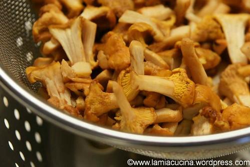 Pfifferlingspastetchen 1_2012 07 10_6085