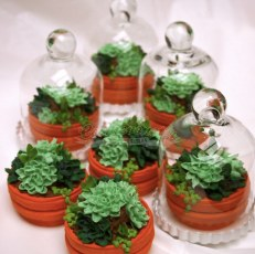 Mini Terrarium Shortbread custom cookies