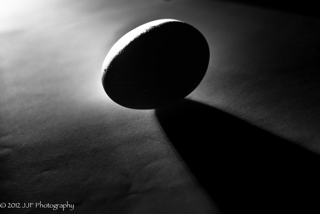 2012_Jul_19_Egg Silhoutte_008
