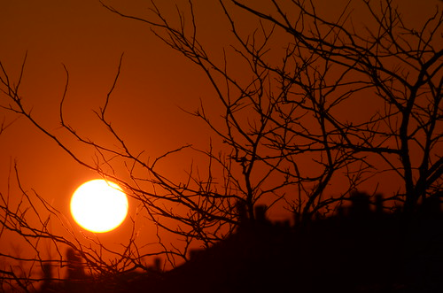 Sun Set by PersephoneM