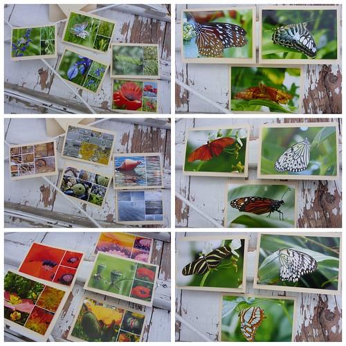 Augenglück Grußkarten 2012-06-26
