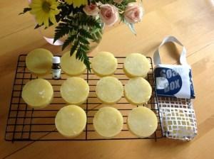 Lemongrass Shampoo Bars & Hanging soap box with drying mesh