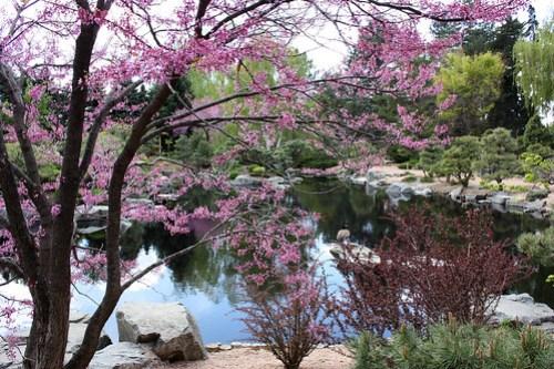 20120416_Denver_Botanic_Garden_048