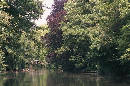 little lake and little bridge