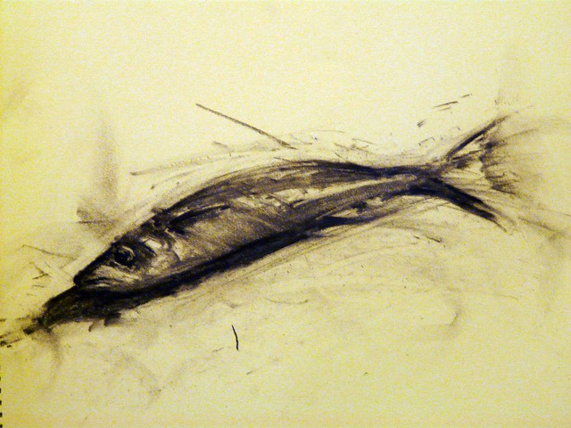 a fish drawing in charcoal by artist stathis_mavrides