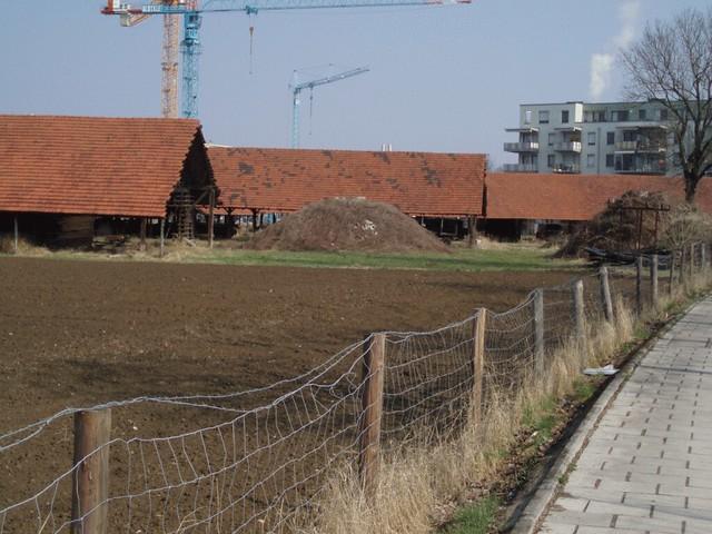Zwölf2012_Mär2