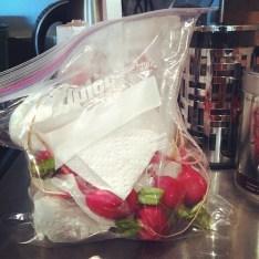 Image result for storing radishes