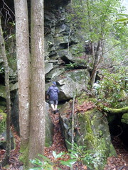Thompson River Trail
