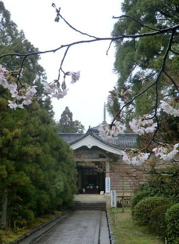 Reiho-kan Open for Spring!