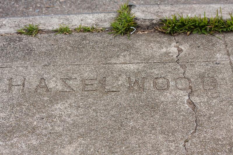 0497 Hazelwood
