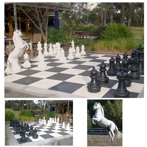 Chess Anyone? by iMac73