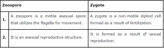 NCERT Solutions Class 12 Biology Chapter 1 : Reproduction in Organisms 55