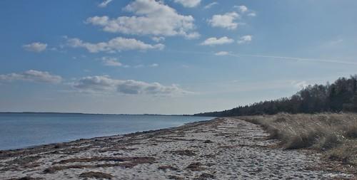 Feddet Strand South