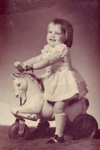 horse prof