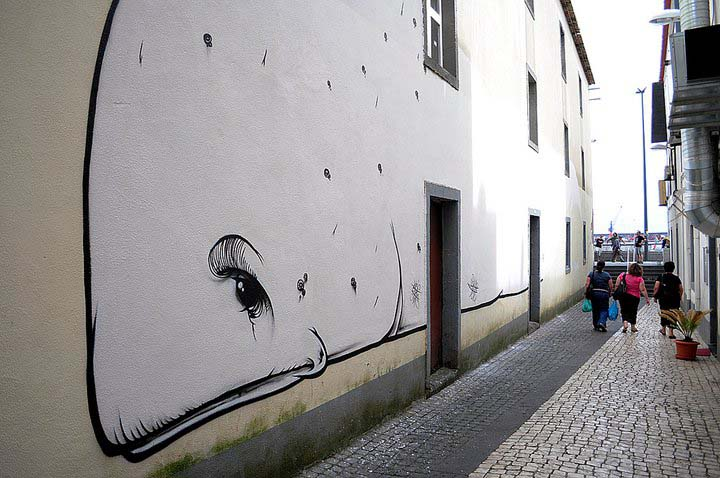Klaus Jost, Weißer Wal. Mauergraffiti