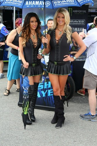 Monster Energy Drink Girls