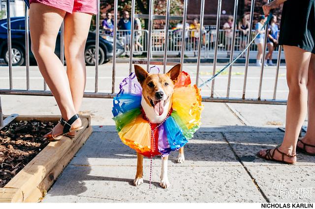 Pride Parade 2016-95