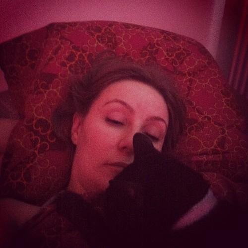 """Wake up, human!"" #cat"